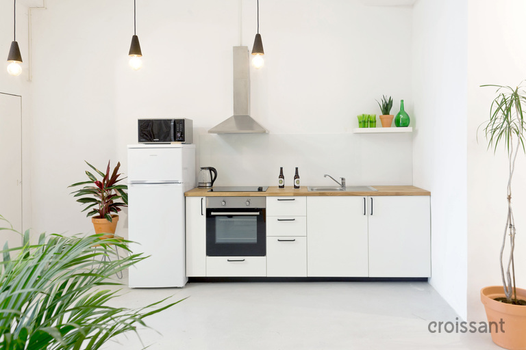 a kitchen with a sink and a plant