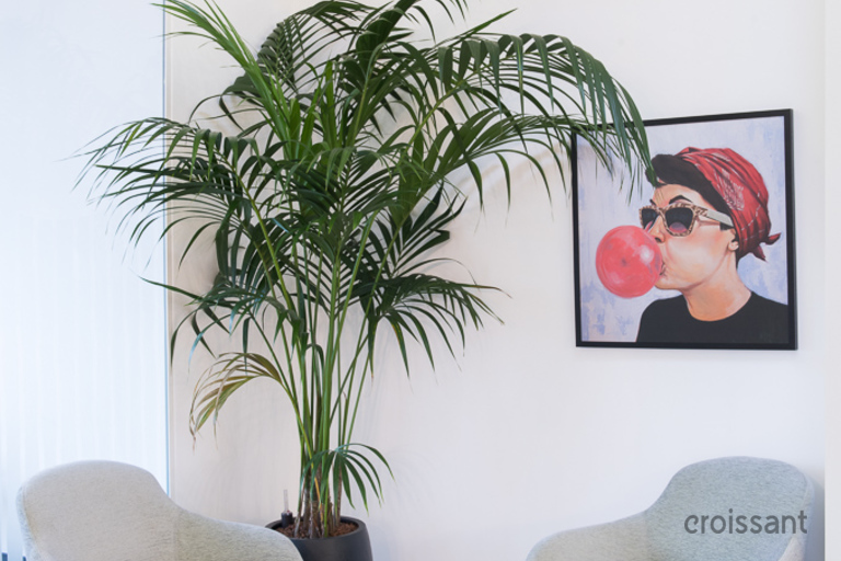 a living area with palm trees
